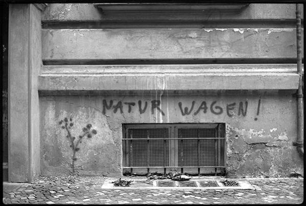 """""""natur wagen"""" - Graffiti an einer Häuserwand in Schöneberg"""