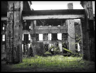 Zentrale Halle der Ruine Sauerstoffwerk II in Peenemünde   Usedom - © bildraum-f   fotografie